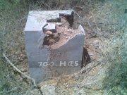 explotacion mina de oro 65ha.