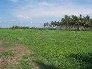 terreno para proyecto en novillero nayarit