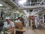 Compro Empresas de Alimentación Operando y Con buen Margen de Utilidad!!