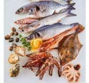 Busco Socio Inversor para Exportación de Mariscos y Pescado