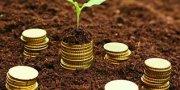SE OFRECE UN 8% MENSUAL DE RENDIMIENTO -COMERCIALIZADORA AGRICOLA BUSCA FINANCIAMIENTO SERIO PARA CAPITAL DE TRABAJO - Se ofrecen rendimientos al 8% mensual