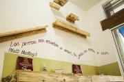 Traspaso Cafetería UNICA En Playa Del Carmen CAT CAFE