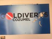 Busco socio inversor del 50%, para un gran negocio en Cozumel