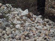 Socio capitalista para mina de barita por la zona de torreón coahuila